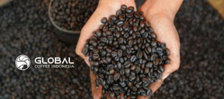 The character of coffee in Indonesia is known to the World