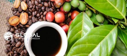 District in Aceh Producing Delicious Gayo Coffee Indonesia