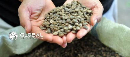 Get to know Lintong Arabica Coffee, which is very popular in the world
