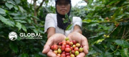 47. History of Java Preanger Coffee, Global 'A Cup Of Java'